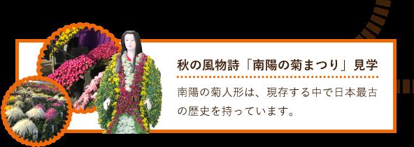 秋の風物詩「南陽の菊まつり」見学 南陽の菊人形は、現存する中で日本最古の歴史を持っています。